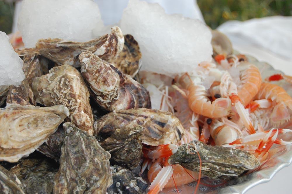 International fresh fish tuscanbites catering